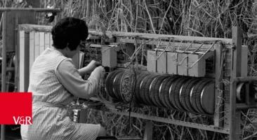 Arbeiterin bei »Telefonbau und Normalzeit«, Frankfurt a.M. 1969.